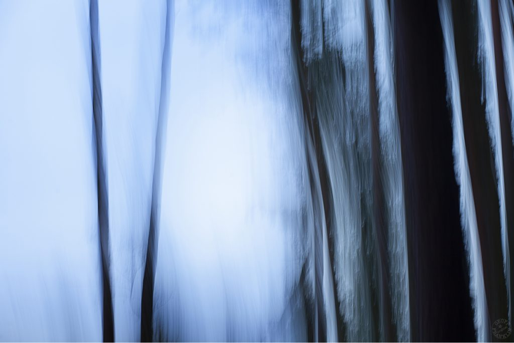 Intentional camera movement photograph, icmphoto of trees at twilight. The picture is predominantly tones of blur with the trees darker. icm photo.